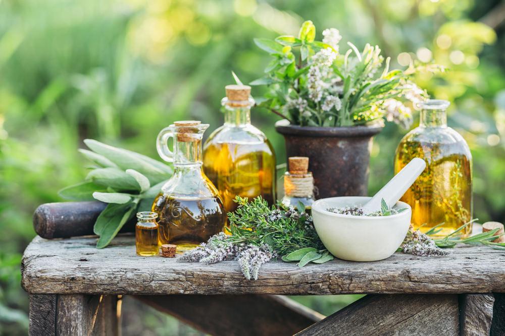 kansere iyi gelen bitkiler, kansere hangi bitkiler iyi gelir
