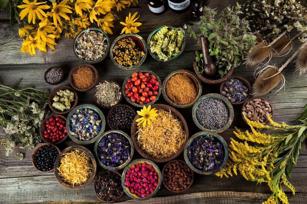 fitoterapi, kanser tedavisi, bitkisel tedavi